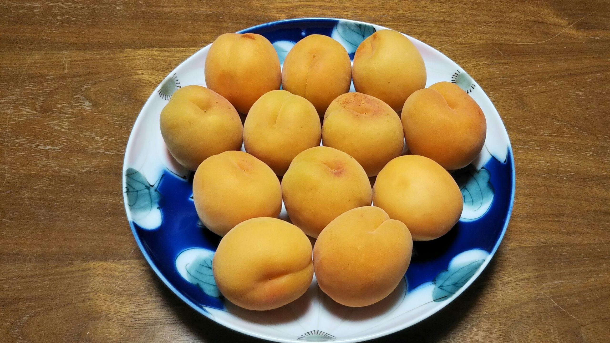 杏子ジャム Apricot Jam